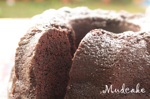 mudcake3